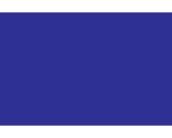 Logo drkedziora